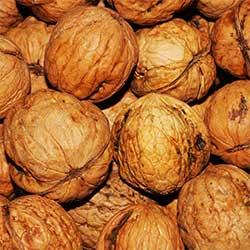 Organik Dodurga Emirali Cevizi (Kabuklu) 1kg