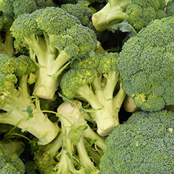 DEĞİRMEN ÇİFTLİĞİ Organik Brokoli (KG)