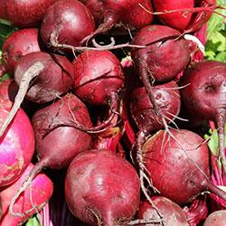 DEĞİRMEN ÇİFTLİĞİ Organic Red Beet  KG