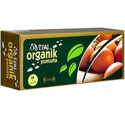 Orvital Organik Yumurta 6 Adet