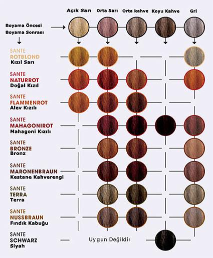 Sante Organik Bitkisel Toz Sa 231 Boyası Kestane Kahverengi